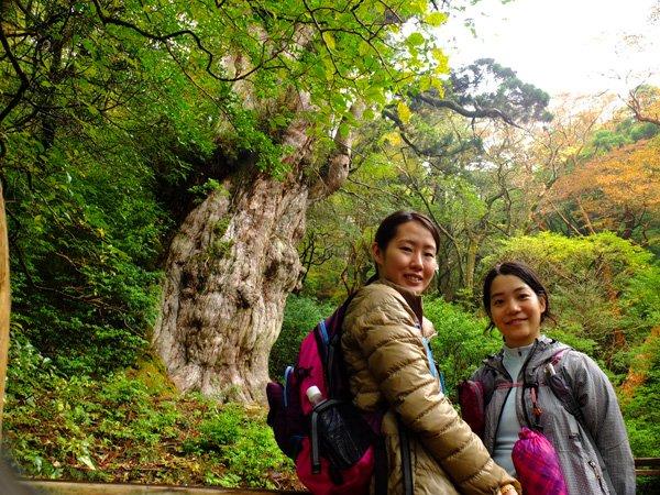 201210satosama