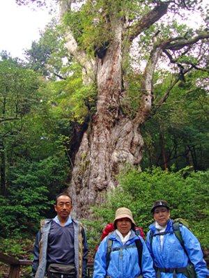 2009 09 higashi 1