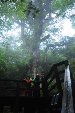 2010 07 tokuyamasama