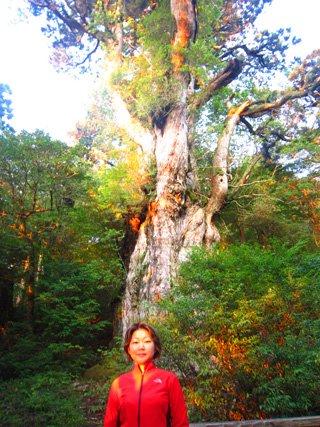 このツアーに参加された林様の声