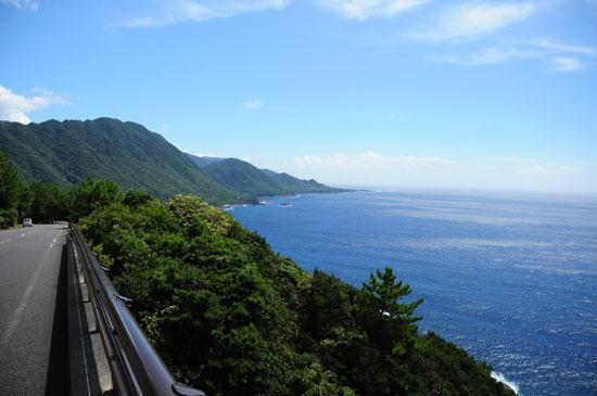 島周遊B・屋久杉の森エコツアーの画像