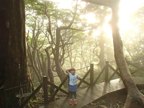 朝陽が包む森の中でにっこり