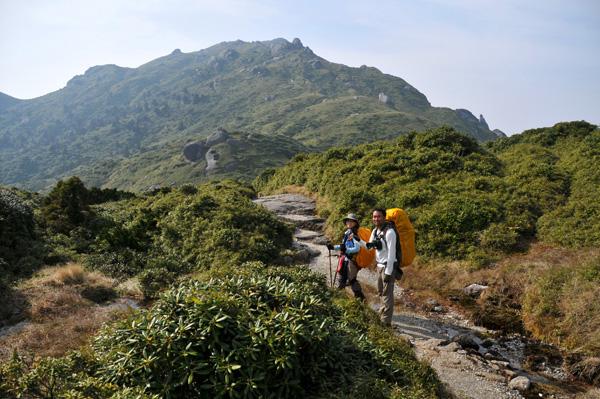 宮之浦岳1泊2日ピストンキャンプツアーの画像