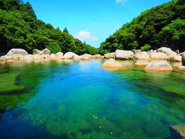 2日間で満喫!屋久島まるごとエコツアーの画像