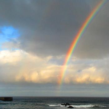 今年初めての虹が見えました