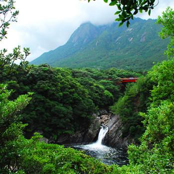 屋久島 トローキの滝