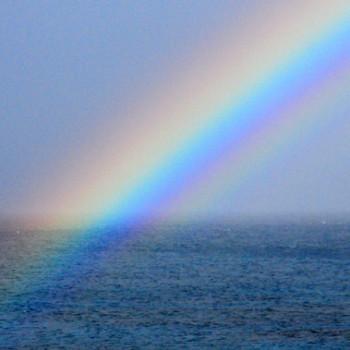 2月の屋久島、虹