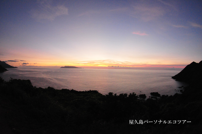 屋久島に帰ってきました