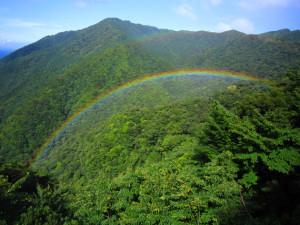 山の虹2p6