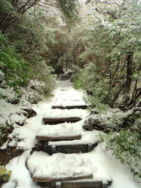 yukinoyodogou2