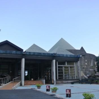 屋久杉自然館は面白い!