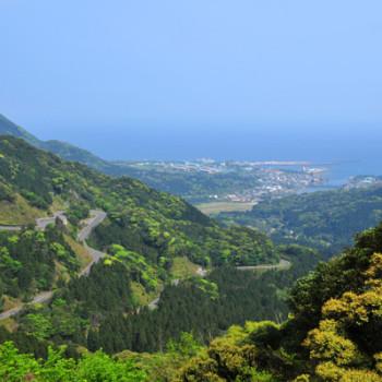 白谷雲水峡までの道がきれいです。
