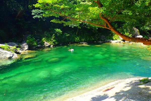 屋久島の画像 p1_19