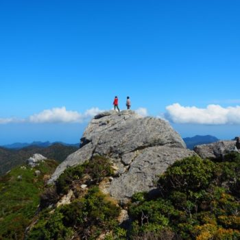 自分にあった屋久島ガイドツアーを選ぶ3つの方法
